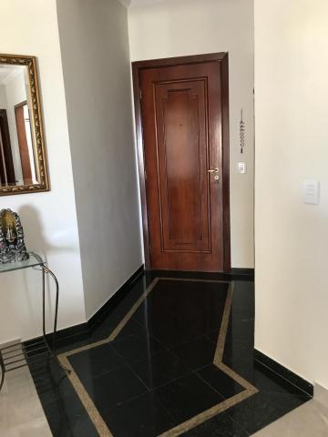 Alugar Apartamento / Padrão em Londrina. apenas R$ 1.790,00