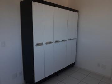 Alugar Apartamento / Padrão em Londrina R$ 900,00 - Foto 7