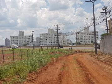 Londrina Gleba Fazenda Palhano Comercial Venda R$3.500.000,00  Area do terreno 4612.86m2
