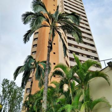 Comprar Apartamento / Padrão em Londrina R$ 900.000,00 - Foto 32