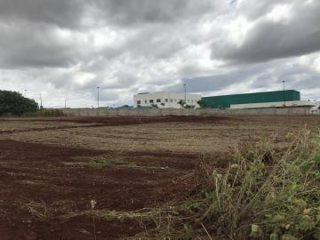 Alugar Terreno / Área em Ibiporã. apenas R$ 600.000,00