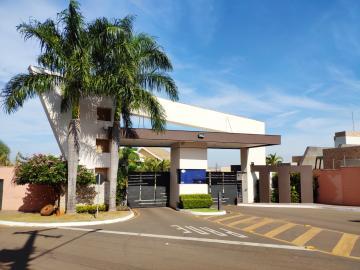 Casa / Condomínio em Londrina Alugar por R$3.800,00