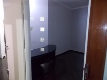Comercial / Sala - Prédio em Londrina Alugar por R$1.100,00