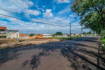 Alugar Terreno / Área em Londrina. apenas R$ 510.864,00