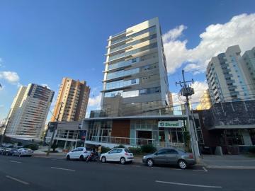 Comercial / Sala - Prédio em Londrina Alugar por R$15.687,00