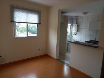 Apartamento / Padrão em Londrina Alugar por R$1.100,00