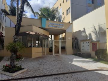 Apartamento / Flat em Londrina Alugar por R$550,00