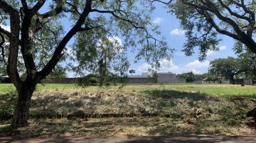 Comprar Terreno / Residencial em Londrina R$ 315.000,00 - Foto 4