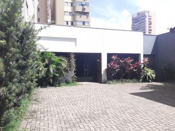 Comercial / Sala em Londrina Alugar por R$5.500,00
