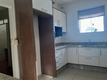 Alugar Comercial / Sala em Londrina R$ 3.500,00 - Foto 15