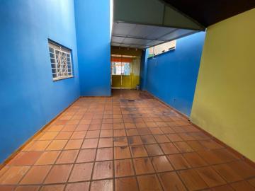 Alugar Comercial / Casa em Londrina R$ 6.000,00 - Foto 13