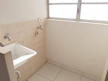 Alugar Apartamento / Padrão em Londrina R$ 800,00 - Foto 13