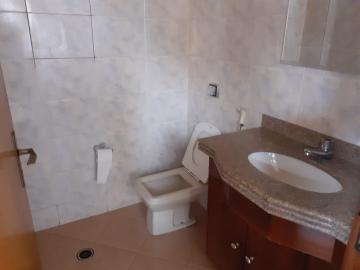 Alugar Comercial / Barracão em Londrina R$ 3.200,00 - Foto 18
