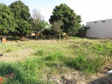 Comprar Terreno / Comercial em Londrina R$ 2.100.000,00 - Foto 4