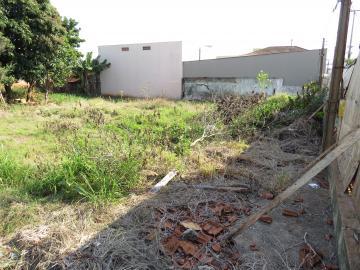 Comprar Terreno / Comercial em Londrina R$ 2.100.000,00 - Foto 6