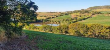Comprar Terreno / Área em Sertanópolis R$ 3.440.000,00 - Foto 2