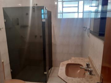 Alugar Apartamento / Padrão em Londrina R$ 1.300,00 - Foto 8
