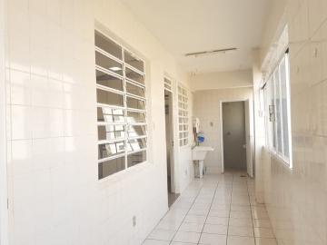 Alugar Apartamento / Padrão em Londrina R$ 1.300,00 - Foto 14