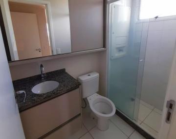 Alugar Apartamento / Padrão em Londrina R$ 1.690,00 - Foto 11