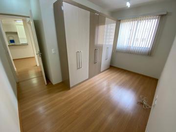 Alugar Apartamento / Padrão em Londrina R$ 1.050,00 - Foto 11